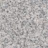Luna Pearl Granite Countertop
