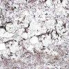 Mystic Spring Granite Countertop